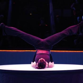 XXVIIe Festival Mondial du Cirque de Demain